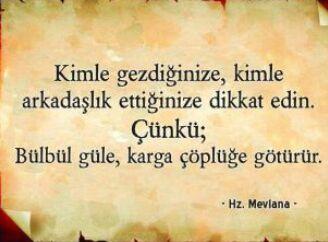 مدونة عبدالرحمن عارف - تعليم اللغة التركية